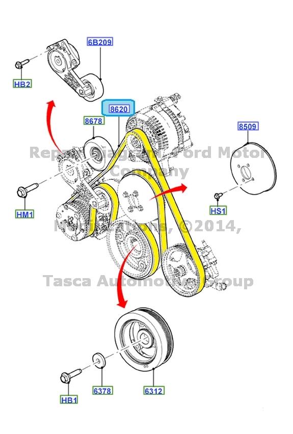 Oem Serpentine Drive Belt E150 E250 E350 E450 F250 4 6  5 4