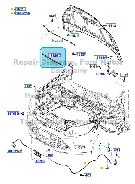 Details About New Oem Front Weatherstrip Under Hood Trim 2012 2015 Ford Focus Cv6z 16b990 A